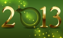 New 2013 year's card with cartoon snake instead 0.